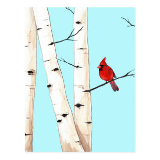 Cardinal with Birch Trees Postcard