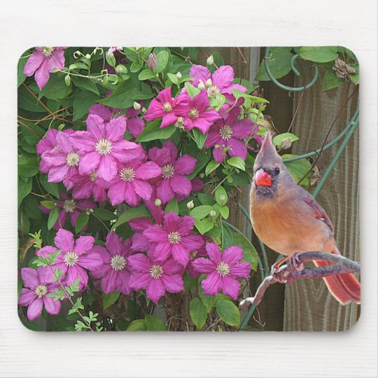 Cardinal with Flowers - Mouse Mat