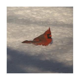 Cardinal, Wood Photo Print. Wood Canvases