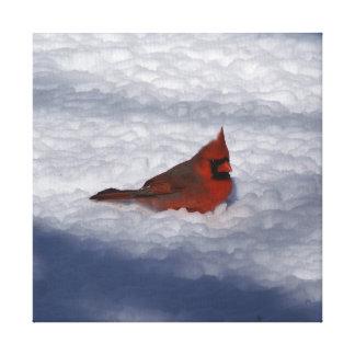 Cardinal, Wrapped Canvas Print.