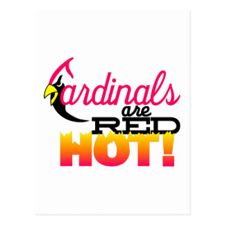 Cardinals are Red Hot Postcard