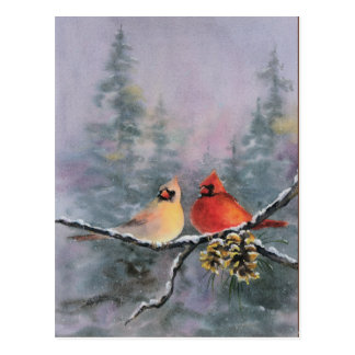 CARDINALS by SHARON SHARPE Postcard