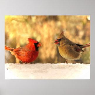 Cardinals in Autumn Print
