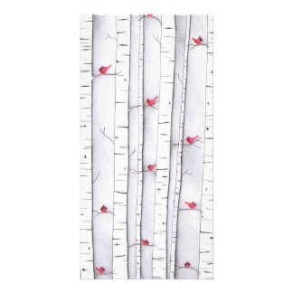 Cardinals in the Birches Picture Card