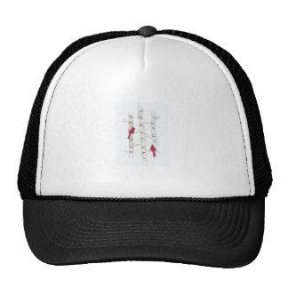 CARDINALS ON ASPEN CAP