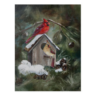 Cardinals On Snowy Birdhouse Postcard