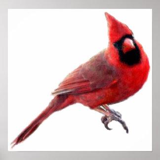 Cardinals Posters