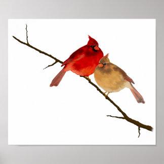Cardinals Print