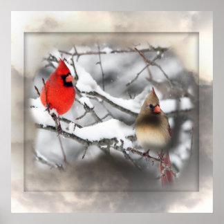 Cardinals Winter Scene Poster