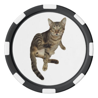 Cards Of poker Charming Cat Poker Chip Set
