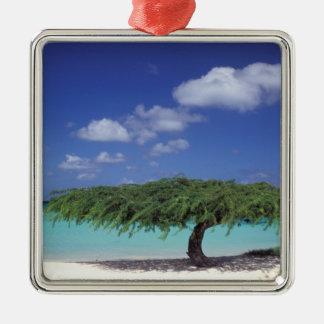 Caribbean, Aruba. Eagle Beach Christmas Ornament