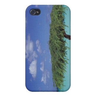 Caribbean, Aruba. Eagle Beach iPhone 4/4S Covers