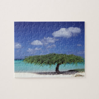 Caribbean, Aruba. Eagle Beach Jigsaw Puzzle