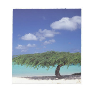 Caribbean, Aruba. Eagle Beach Notepad
