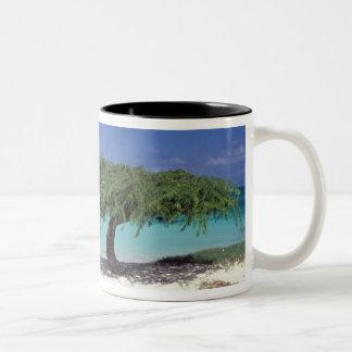 Caribbean, Aruba. Eagle Beach Two-Tone Coffee Mug