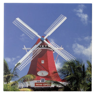 Caribbean, Aruba. Old Mill, converted into 'Mill Large Square Tile