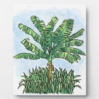Caribbean banana tree plaque