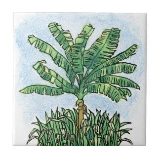 Caribbean banana tree small square tile