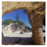 Caribbean, Bermuda, Tucker's Town. Natural Tile
