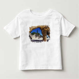 Caribbean, Bermuda, Tucker's Town. Natural Toddler T-Shirt