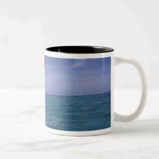 Caribbean, Bottlenose dolphin Tursiops Two-Tone Coffee Mug