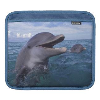 Caribbean, Bottlenose dolphins Tursiops 5 iPad Sleeve