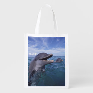 Caribbean, Bottlenose dolphins Tursiops 5 Reusable Grocery Bag