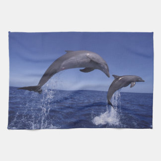 Caribbean, Bottlenose dolphins Tursiops 7 Tea Towel