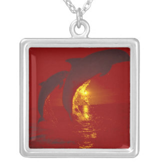 Caribbean, Bottlenose dolphins Tursiops 9 Square Pendant Necklace