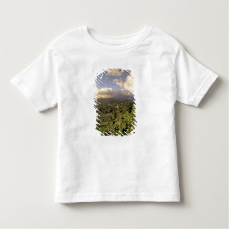 Caribbean, French West Indies, Martinique. Shirt
