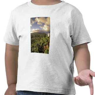 Caribbean, French West Indies, Martinique. T Shirts