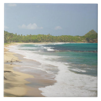 Caribbean, GRENADA, East Coast, Grenada Bay, Large Square Tile