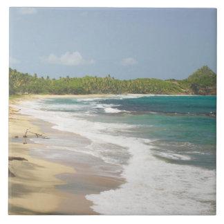 Caribbean, GRENADA, East Coast, Grenada Bay, Large Square Tile