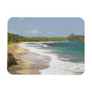 Caribbean, GRENADA, East Coast, Grenada Bay, Magnet