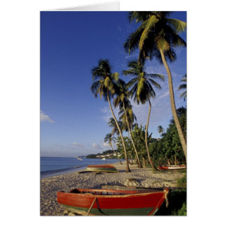 CARIBBEAN, Grenada, St. George, Boats on palm Greeting Card