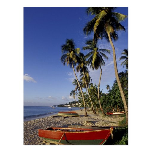 CARIBBEAN, Grenada, St. George, Boats on palm Post Card