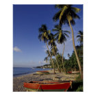 CARIBBEAN, Grenada, St. George, Boats on palm Poster