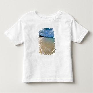 Caribbean, Leeward Islands, Antigua, Dickenson Shirts