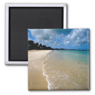 Caribbean, Leeward Islands, Antigua, Dickenson Square Magnet