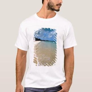 Caribbean, Leeward Islands, Antigua, Dickenson T-Shirt