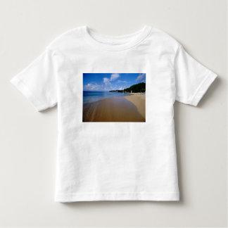 Caribbean, Lesser Antilles, West Indies, 3 Toddler T-Shirt