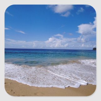 Caribbean, Lesser Antilles, West Indies, 4 Square Sticker