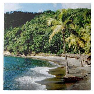Caribbean, Lesser Antilles, West Indies, Saint Large Square Tile