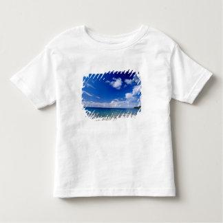 Caribbean, Lesser Antilles, West Indies, T Shirts