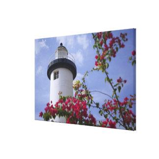 Caribbean, Puerto Rico, Viegues Island. The Canvas Prints