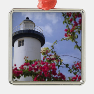 Caribbean, Puerto Rico, Viegues Island. The Christmas Ornament
