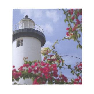 Caribbean, Puerto Rico, Viegues Island. The Notepad