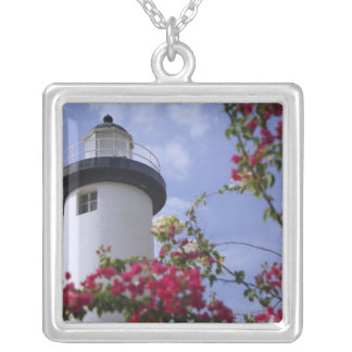 Caribbean, Puerto Rico, Viegues Island. The Silver Plated Necklace