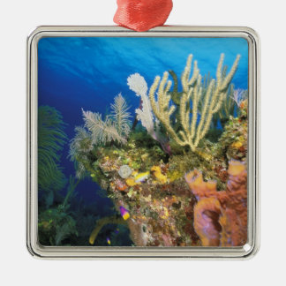 Caribbean. Reef. Christmas Ornament