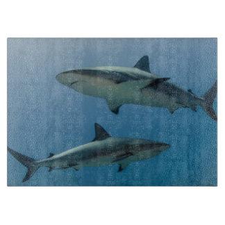 Caribbean Reef Shark Cutting Board